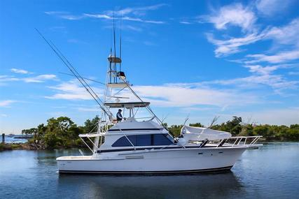 Bertram III Convertible for sale in United States of America for $150,000 (£118,886)