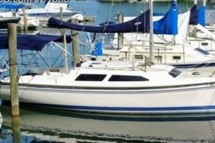 Catalina 250 for sale in United States of America for $22,400 (£17,386)