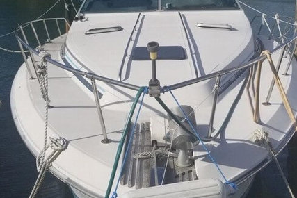 Sea Ray 40 for sale in United States of America for $9,000 (£7,149)