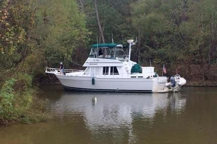 Mainship 3 Stateroom 430 Trawler for sale in United States of America for $199,500 (£158,472)