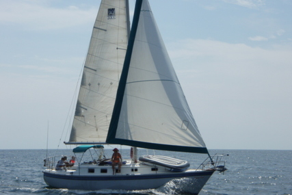 Watkins 33 for sale in United States of America for $19,500 (£15,490)