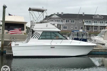 Wellcraft Sedan Cruiser 260 for sale in United States of America for $21,950 (£17,018)