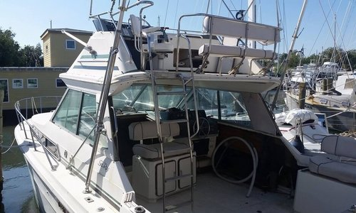 Image of Sea Ray 340 Sport Fish for sale in United States of America for $14,900 (£12,263) Fort Pierce, Florida, United States of America