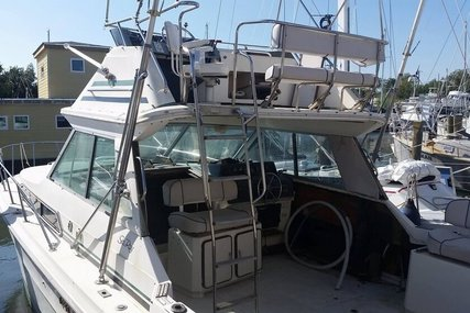 Sea Ray 340 Sport Fish for sale in United States of America for $17,900 (£13,872)