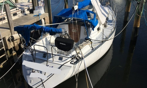 Image of Hunter 36 for sale in United States of America for $20,500 (£14,720) Stuart, Florida, United States of America