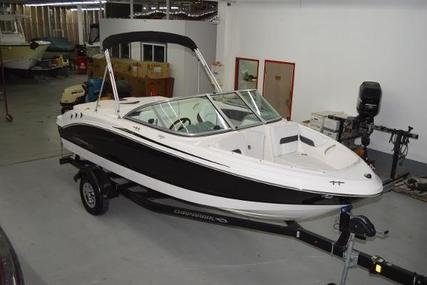 Chaparral 19 Sport H2O for sale in Netherlands for €8,550 (£7,548)