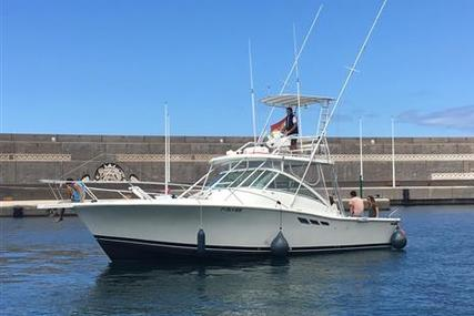 Luhrs Open Fisher 36 for sale in Spain for €135,000 (£115,512)