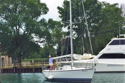 Schock 41 GP for sale in United States of America for $24,995 (£19,382)