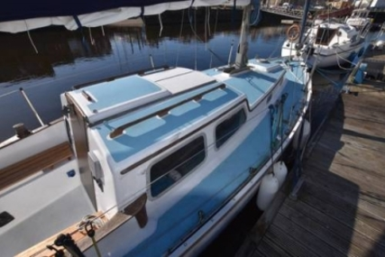 Trident TRIDENT 24 for sale in United Kingdom for £2,995