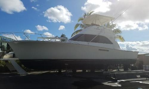 Image of Ocean Yachts Fresh Bottom Job & Zincs for sale in United States of America for $89,900 (£69,765) Stuart, FL, United States of America
