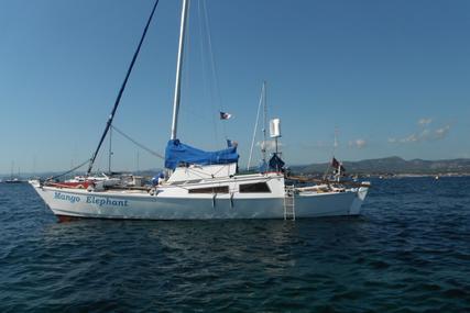 Wharram Tiki 30 for sale in Spain for €37,000 (£31,650)