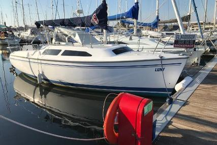 Catalina 250 for sale in United Kingdom for £10,995