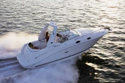 Sea Ray 260 Sundancer for sale in Hong Kong for $88,000 (£67,788)