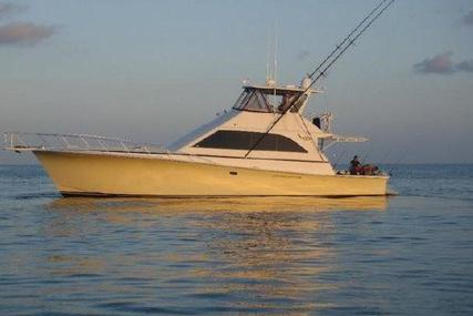 Ocean Yachts Convertible for sale in Mexico for $239,000 (£183,778)