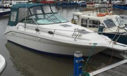 Image of Sea Ray 270 Sundancer for sale in United Kingdom for £20,000 Sunderland, United Kingdom