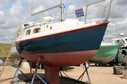 Westerly Westery Tiger 25 for sale in United Kingdom for £7,950
