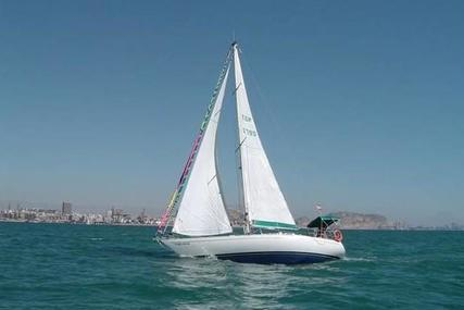 Noray 383 for sale in Spain for €35,000 (£29,939)