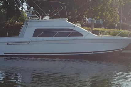 Mainship 40 for sale in United States of America for $155,600 (£118,241)