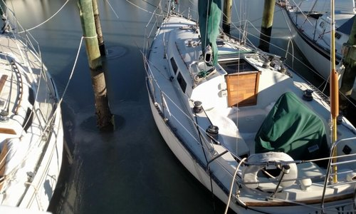 Image of C & C Yachts 34 for sale in United States of America for $25,000 (£17,953) Key Largo, Florida, United States of America