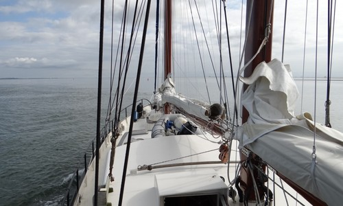 """Image of ONE OFF """"Polar"""" Expedition Sailing Yacht for sale in Netherlands for €495,000 (£426,997) Makkum (, Netherlands"""