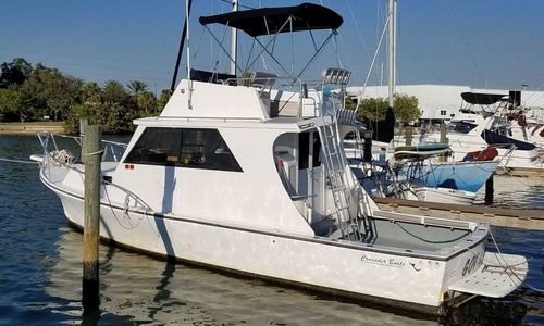 Image of Crusader 34 Sportfish for sale in United States of America for $42,900 (£33,336) St. Petersburg, Florida, United States of America