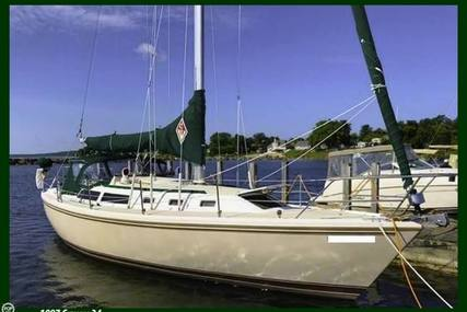 Catalina 34 Tall Rig for sale in United States of America for 39,000 $ (30,847 £)
