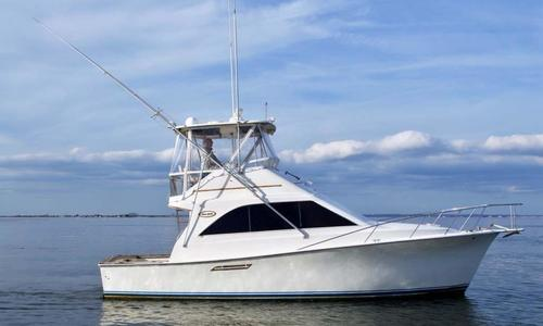 Image of Ocean Yachts Super Sport for sale in United States of America for $74,900 (£54,006) Long Island, New York, United States of America