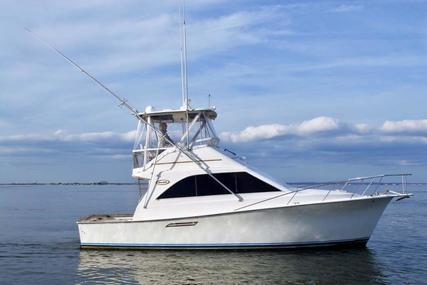 Ocean Yachts Super Sport for sale in United States of America for $74,900 (£54,510)