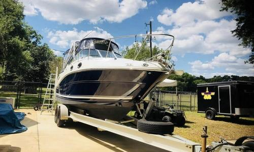 Image of Sea Ray 270 Amberjack for sale in United States of America for $65,000 (£49,626) sorrento, Florida, United States of America