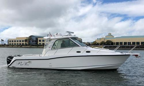 Image of Boston Whaler 345 Conquest for sale in United States of America for $244,900 (£188,684) alameda, CA, United States of America