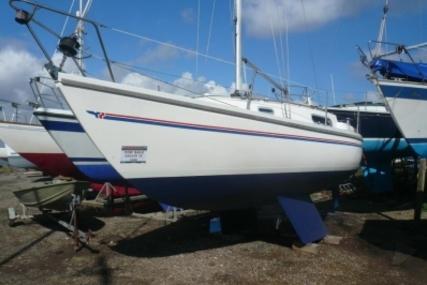 Sadler 26 for sale in United Kingdom for £12,500