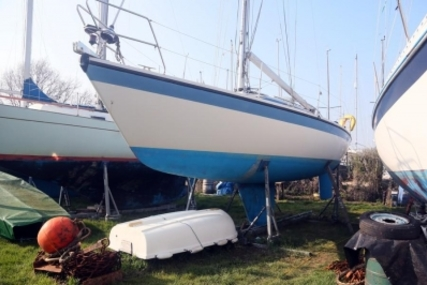 Dehler 31 for sale in United Kingdom for £21,995