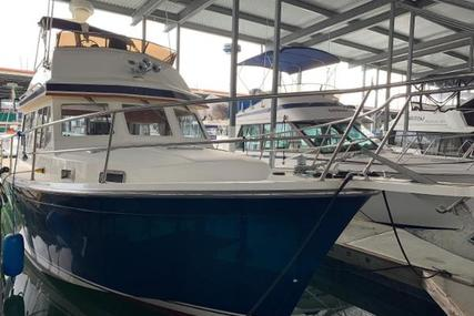 Sabre Flybridge for sale in United States of America for $110,000 (£86,329)
