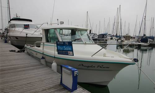Image of Ocqueteau 645 for sale in United Kingdom for £19,700 Brighton, United Kingdom