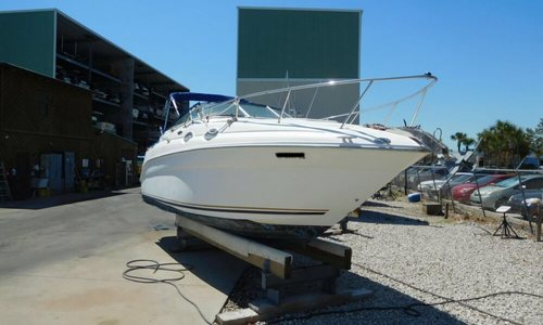 Image of Sea Ray 260 Sundancer for sale in United States of America for $24,900 (£19,099) Cape Canaveral, Florida, United States of America