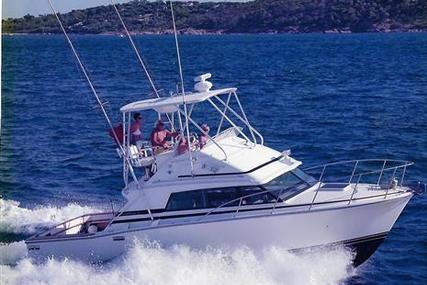 Bertram 33 Sport Fish for sale in France for €69,000 (£61,124)