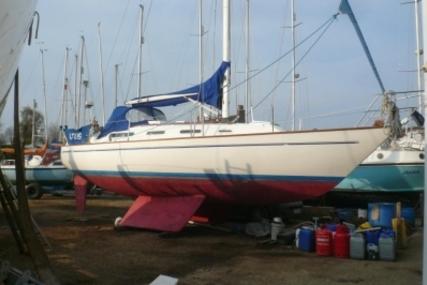 Sadler 34 for sale in United Kingdom for £24,950