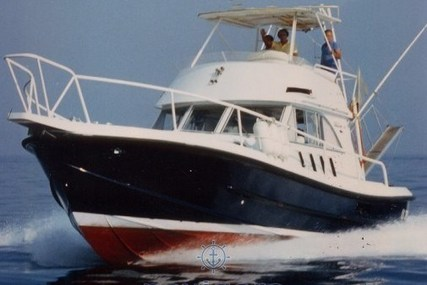 CATARSI CALAFURIA 41 for sale in Italy for P.O.A. (P.O.A.)