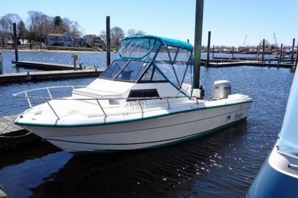 Angler 204 for sale in United States of America for $13,995 (£10,997)