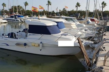 JAVANA 650 for sale in Spain for €21,500 (£19,086)
