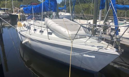 Image of Catalina 34 MKI for sale in United States of America for $25,900 (£20,325) Tarpon Springs, Florida, United States of America