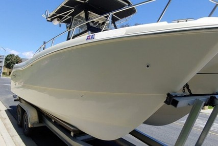 World Cat 24 for sale in United States of America for $40,000 (£31,569)