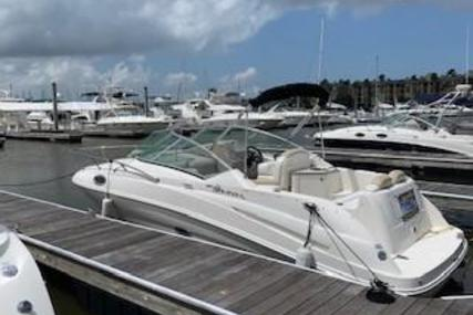 Sea Ray 240 Sundancer for sale in United States of America for $36,900 (£29,106)