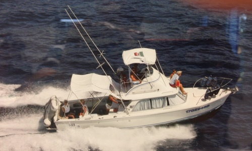 Image of Bertram 31 for sale in Italy for €85,000 (£76,564) Italy