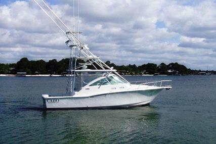 CABO 35  Express for sale in United States of America for $229,750 (£187,888)
