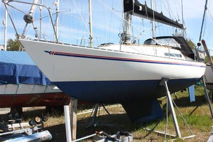 Sadler 25 for sale in United Kingdom for £6,450
