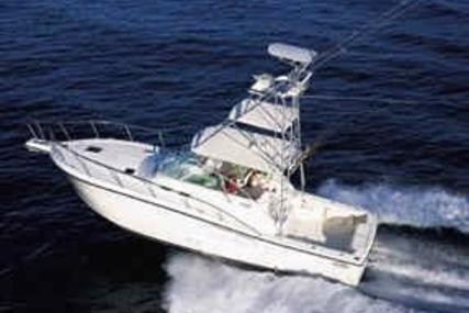 Rampage 38 Express for sale in Jamaica for $225,000 (£184,004)
