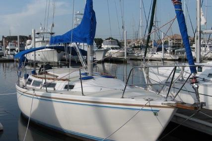Catalina 30 for sale in United States of America for $22,990 (£18,434)