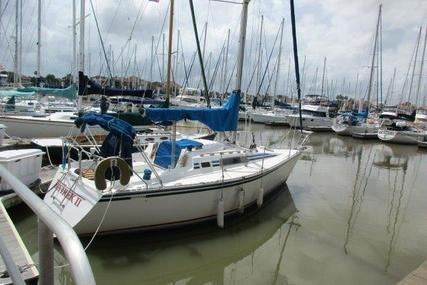 Hunter 28.5 for sale in United States of America for $13,900 (£11,092)