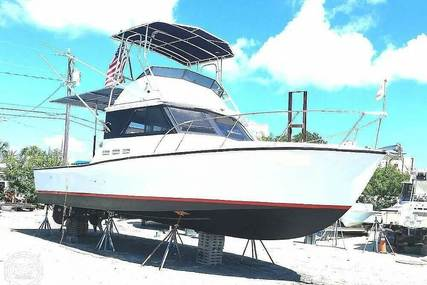Munro 34 for sale in United States of America for $35,000 (£28,807)